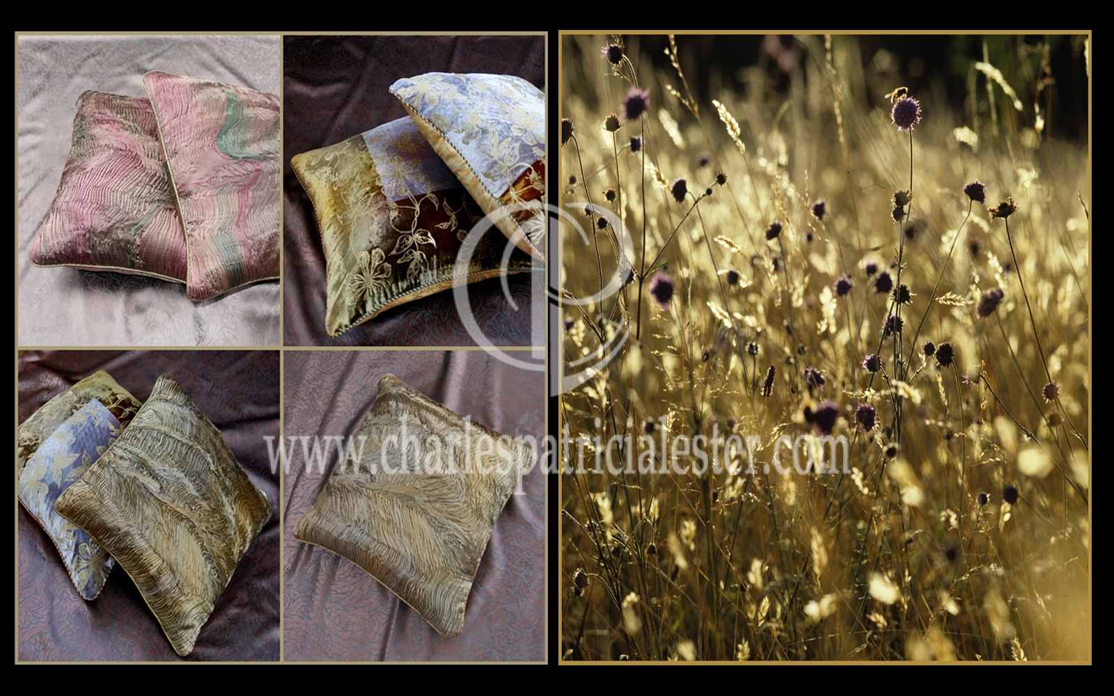 Meadow grasses sun bleached interior art for the home