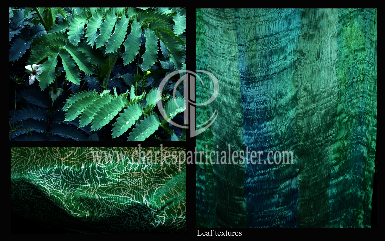 Leaf textures inspiration for textile designs